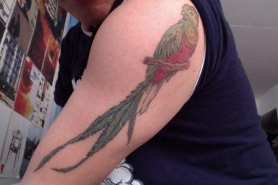 tatuaje perico