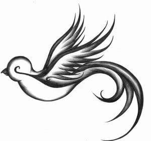 Diseño de tattoo de un pájaro . Ideal para cualquier lugar del ...