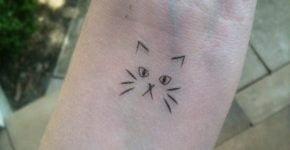 Pequeño gato tatuado