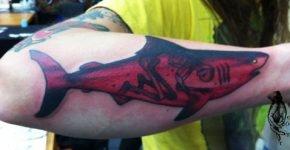 red shark tattoo