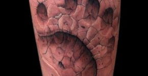 Footprint bear