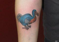 Dodo Bird Tattoo