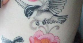 Birds tattoo for women