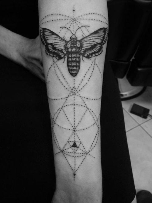 Moth tattoo on the arm