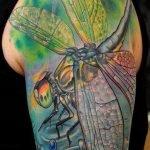 Tatuaje de un pájaro-gato