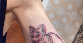 Tatuaje gato 3D