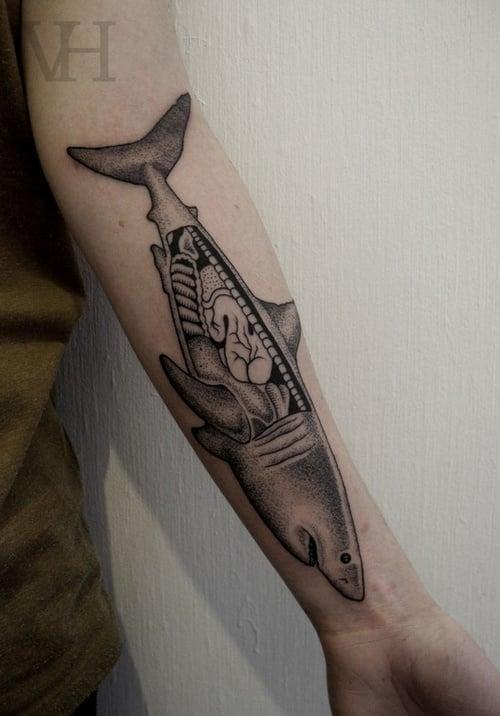 Tatuaje tiburón anatómico