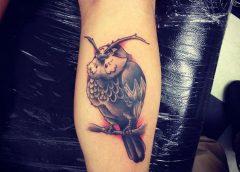 Tatuaje Kaepora Gaebora