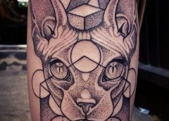 Tatuaje gato sphynx
