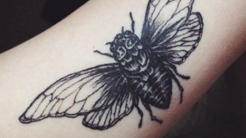 Tatuaje de trío de rosas